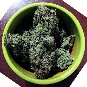bowl-o-cannabis